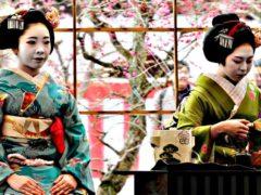 И солнце здесь восходит по-другому: 20 странных и необъяснимых обычаев Японии