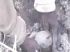Пойдем, рыбы накопаем! Необычный вид рыбалки, снятый на видео в Западной Африке