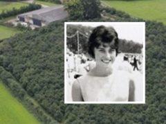 Мужчина посадил на участке 6000 дубов в память о своей умершей жене