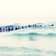 Десятки людей на пляже выстроились в живую цепь, чтобы спасти тонущую семью