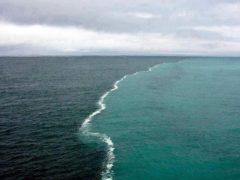 Уникальное место, где два океана встречаются, но никогда не пересекаются – потрясающе зрелище!
