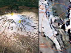 Сенсационное открытие исследователя из США: на вершине горы Адамс обнаружено тело инопланетянина