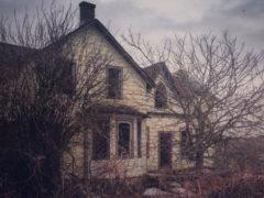 Фотограф обнаружила в зарослях заброшенный дом с очень неожиданным содержимым