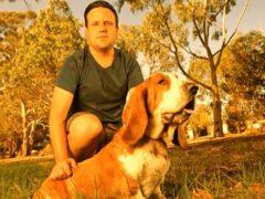 Хозяин не побоялся и отчаянно бросился на выручку своему псу, на которого напали два питбуля