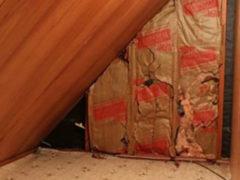 Тайная комната: женщина обнаружила странного вида дверь за кроватью маленького сына