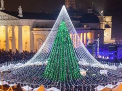 Самая красивая новогодняя ёлка Европы, украшенная 50 000 лампочек, установлена в Вильнюсе
