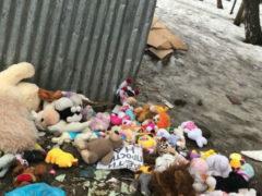 Все игрушки, возложенные в день траура по погибшим в Кемерово, безжалостно выброшены на помойку