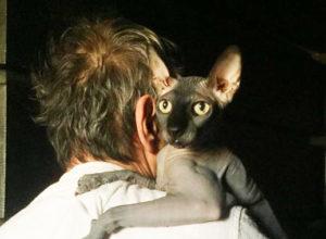 Неизвестный нагло обманул семью тяжелобольного Бари Алибасова и забрал 800 тысяч рублей за «фальшивого» кота