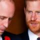 Скандалы, сплетни, интриги: принц Гарри впервые открыто заговорил о непростых отношениях с родным братом